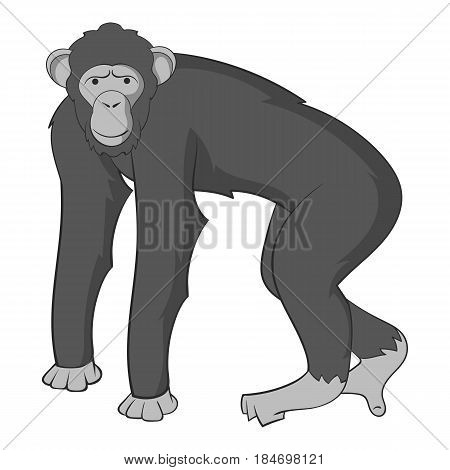 Chimpanzee icon in monochrome style isolated on white background vector illustration