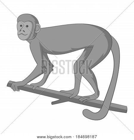 Macaque icon in monochrome style isolated on white background vector illustration
