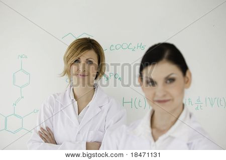 Two Women Posing In Front Of A White Board