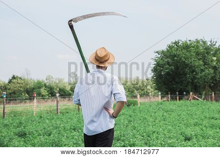 Worker with a scythe in the field