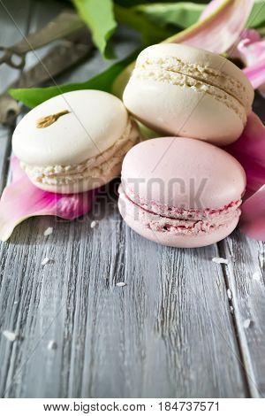 Clous up French macaroons with a lily flower on a light background
