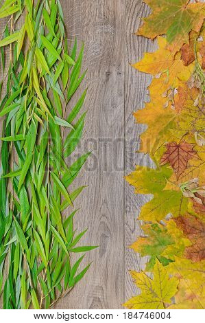 Branches of willow and maple leaves on a wooden background. Vertical photo.