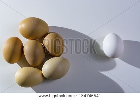 Raw Organic Brown And White Eggs Over White Background. Alone Among Strangers, The Concept Of Inequa