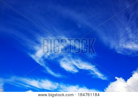 Sky daylight. Natural sky composition. Blue sky with clouds background.