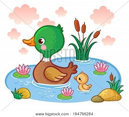 A duck with ducklings floats on the lake. Vector illustration with birds. Picture in the children's cartoon style.