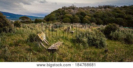 Park bench in the wildness of Tierra Del Fuego
