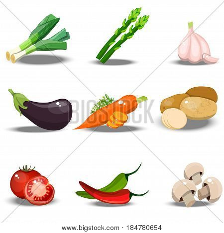 Very high quality original trendy vector set with fresh healty vegetables. Summer agriculture design. paprika, leek, tomato, garlic, eggplant, carrot, potato, champignon pepper