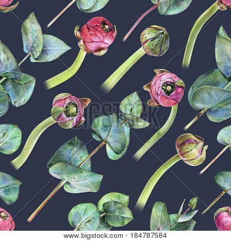 Seamless floral pattern with purple buttercup buds and green eucalyptus. Spring flowers and plants. Botanical natural background drawn by hand with colored pencil