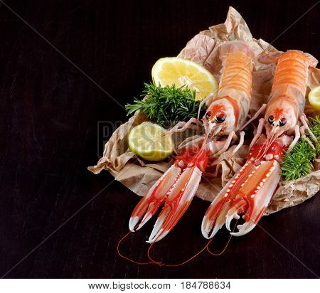 Big Raw Langoustines with Lime Lemons Slices and Rosemary on Parchment Paper Cross Section on Black Wooden background