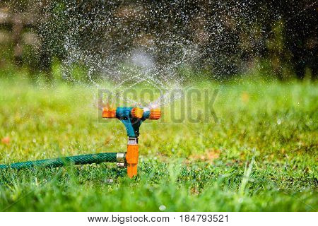 Garden sprinkler watering grass at sunset and rainbow