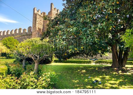 park of the carrarese castle of Este Padua province Italy