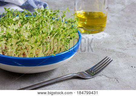 Watercress salad grown up in a plate on a concrete background. Healthy eating concept. Selective focus