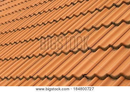 A tiled roof on a country house.