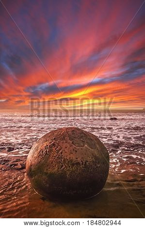 Moeraki boulder on the beach during low tide Moeraki New Zealand