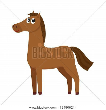 Well gromed brown horse with big eyes, cartoon vector illustration isolated on white background. Cute and funny farm horse with friendly face and big eyes