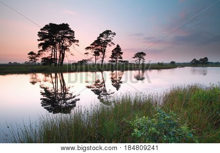 sunset over wild lake in summer Drenthe Netherlands