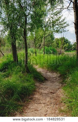 Dirt curving road in the shade of the trees. Rural landscape with road along the small river green meadow and forest on the horizon, Irpin, Ukraine.
