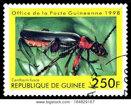 STAVROPOL RUSSIA - April 30 2017: a stamp printed in Guinea (Republique de Guinee) shows Beetle Cantharis fusca series beetle circa 1998