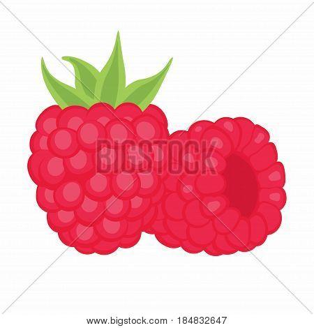 two raspberries on white background closeup shot of fresh raspberries fresh fruit the healthy food full of vitamins