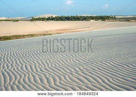 Famost Sunset Dune In Jericoacoara, Ceara State, Brazil