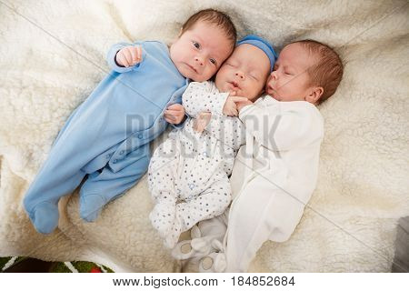 Portrait of newborn triplets - boys close up