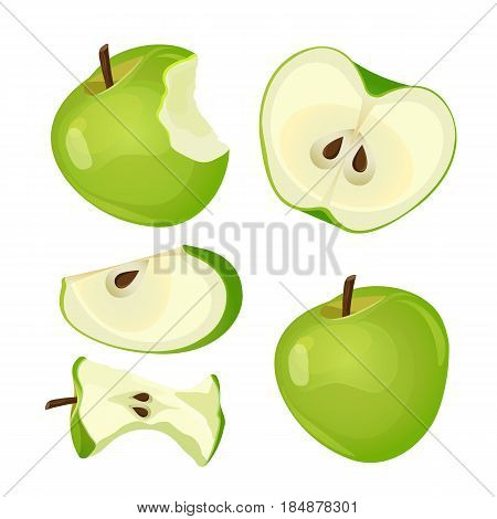 Bitten apple, whole, half and slice isolated on white background vector illustration. Mark of bitten fruit with black seeds