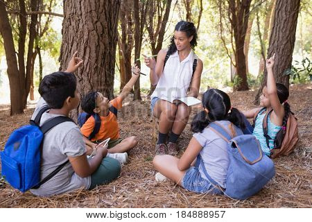 Teacher explaning students sitting in forest during summer field trip