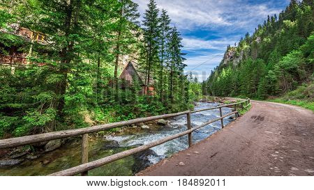 Mountain Trail By The River In Tatras Mountains, Poland