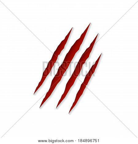 Claws scratching animal isolated on white background. Vector illustration.