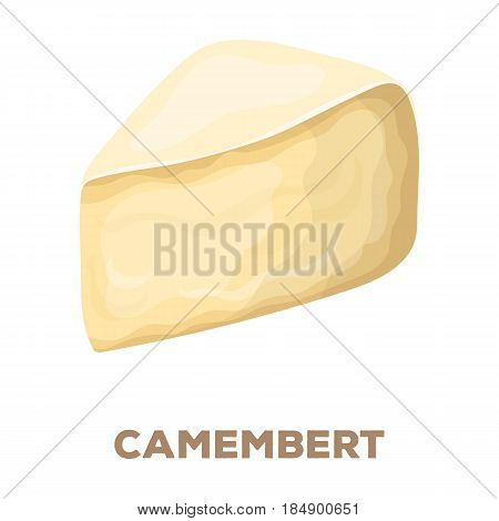 Camembert.Different kinds of cheese single icon in cartoon style rater, bitmap symbol stock illustration .