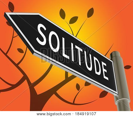 Solitude Sign Means Alone And Lost 3D Illustration