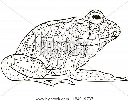 Froggy coloring book vector illustration. Anti-stress coloring for adult toad. Zentangle style. Black and white lines hoptoad. Lace pattern anuran