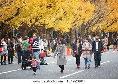 Autumn Tokyo