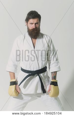 bearded karate man long beard brutal caucasian hipster with moustache in white kimono with black belt and boxing gloves with serious face on grey background unshaven guy