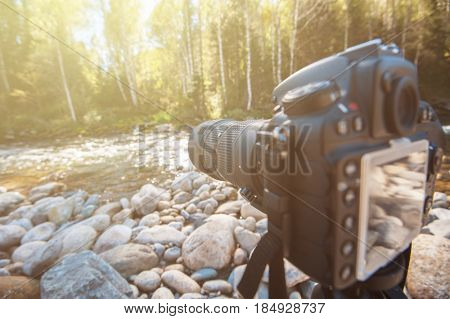 Camera with telephoto lens on a tripod takes photo at nature