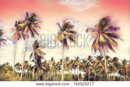 Pink tropical landscape with palm trees. Exotic island digital painting. Beautiful tropical nature. Coco palm trees on sky background. Party or wedding card backdrop. Tropic scene with coconut palms