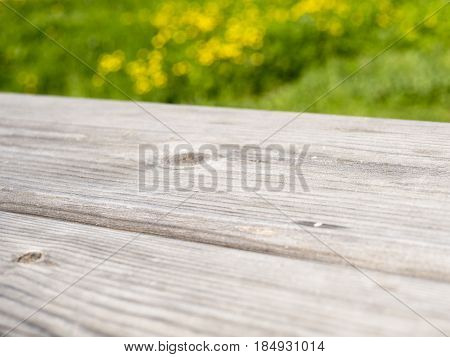 detail of wooden texture in a meadow