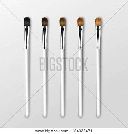 Vector Set of Clean Professional Makeup Concealer Eye Shadow Brushes with Different Black Brown Bristle and White Handles Isolated on White Background