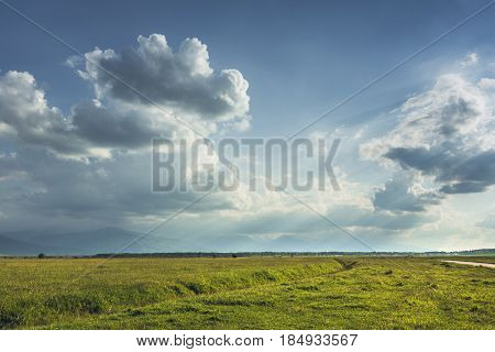 Transylvanian Green Plain