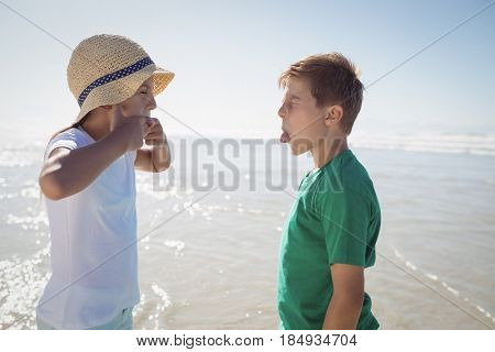 Side view of siblings teasing each other at beach during sunny day