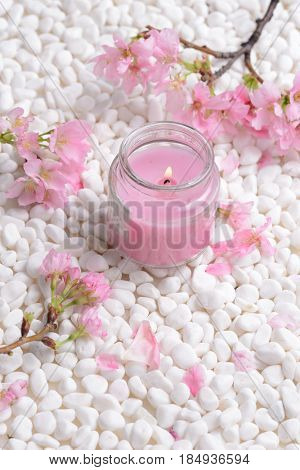 Pink cherry flower with candle on white stones background