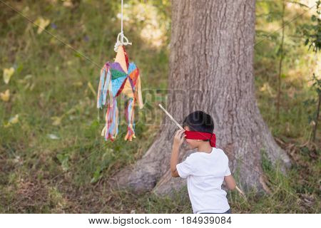 Blindfolded boy hitting pinata by tree in forest