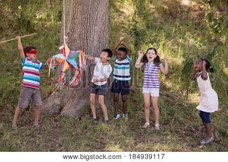 Group of friends cheering for blindfolded boy hitting pinata hanging on tree in forest