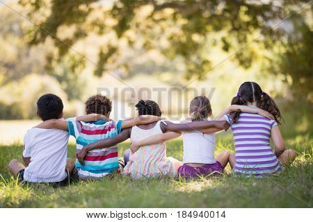 Rear view of friends sitting with arms around on grassy field in forest