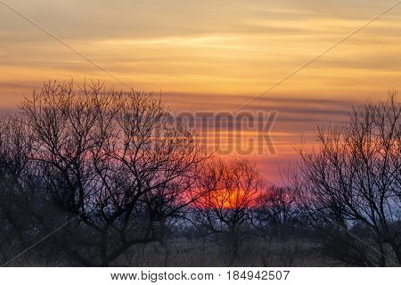 Colorful orange spripped sunset in early spring