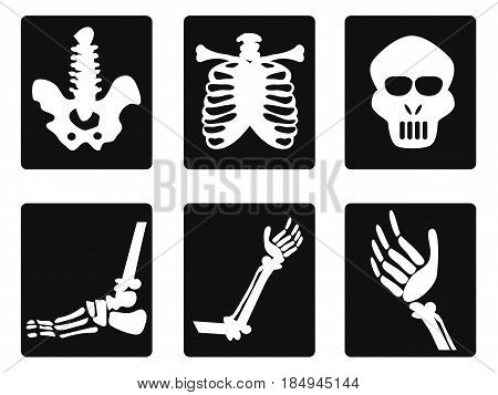 isolated X ray icons on white background