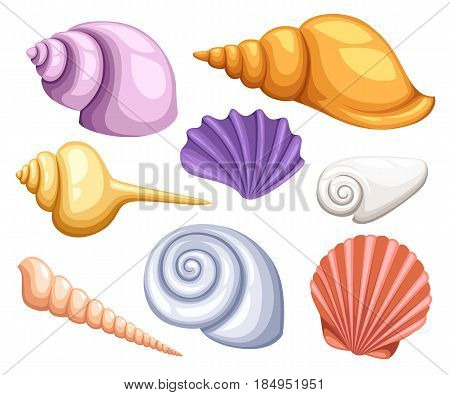 Colorful Tropical Shells Underwater Icon Set Frame Of Sea Shells, Vector Illustration.summer Concept