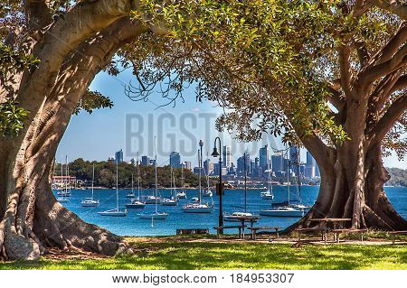 Camp Cove Beach View of Sydney Australia