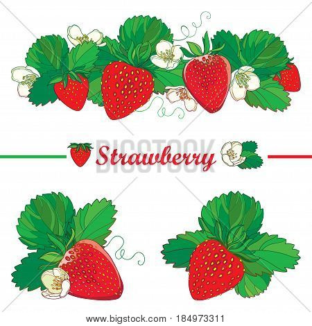Vector set with outline Strawberry, bunch of red berry, ornate flower and green leaves isolated on white background. Fruit elements with ripe strawberry in contour style for summer design.