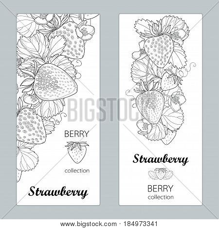 Vector vertical templates with outline Strawberry with berry, flower and foliage in black isolated on white background. Floral design for poster, banner, package with Strawberry in contour style.